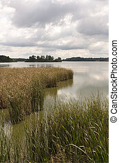čech, rybník, trebon, republika, rozmberk