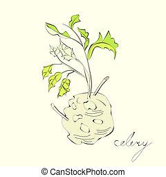 čerstvý, celer, s, kořen, list