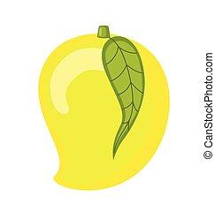čerstvý, mango, vektor