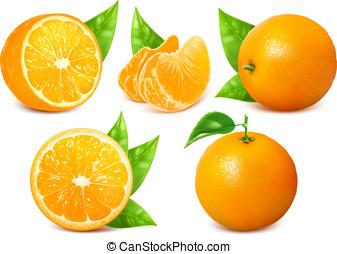 čerstvý, zralý, pomeranč, leaves.