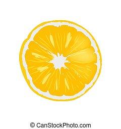 čerstvý, zralý, pomeranč, vnadný kolo, krajíc, ilustrace
