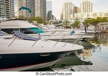 łódki, w, blisko wody, toronto