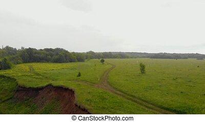 łąka, deszcz, jasny, zielony, pod, krajobraz