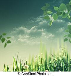 łąka, naturalne piękno, tła, jesienny, dzień