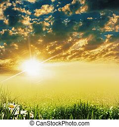 łąka, wieczorny, piękno, abstrakcyjny, dramatyczny, krajobraz