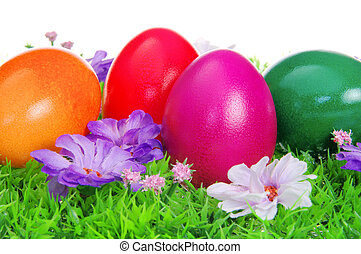 łąka, wielkanoc, 12, kwiat, jaja