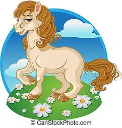 ładny, farba tła, koń