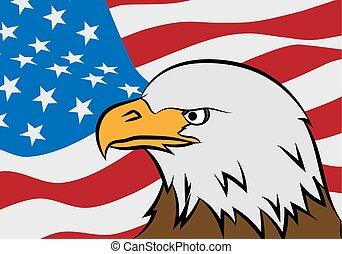 łysy orzeł, z, amerykańska bandera