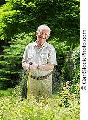 łzawienie, trawa, ogrodowe trykoty