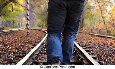 ősz, útvonal, évad, forest., kocogás, vasút, ember