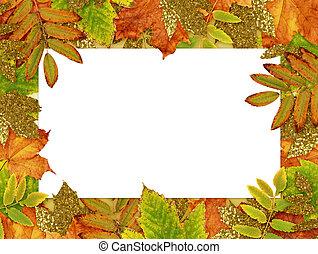 ősz, arany-, zöld, keret, színes