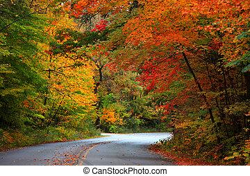 ősz, autózás