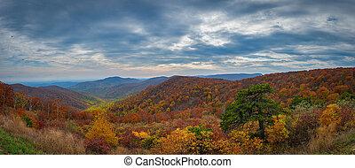 ősz, befest, -ban, shenandoah nemzeti dísztér