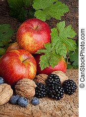 ősz, bogyók, helyett, hálaadás