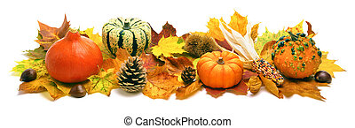 ősz, dekoráció, transzparens