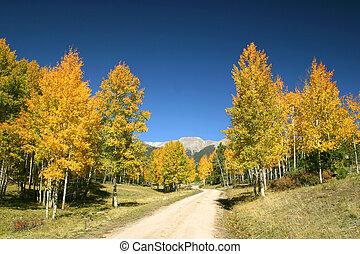 ősz, dicsőség