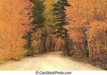 ősz elpirul, alatt, a, hegylánc, hegyek, kalifornia