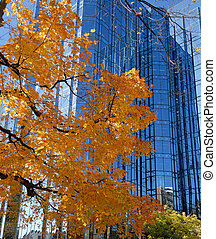 ősz elpirul
