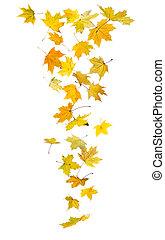 ősz, esik búcsú