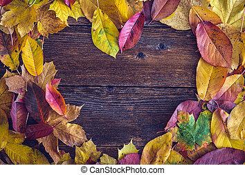 ősz, fából való, zöld, felett, háttér