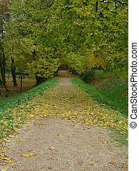 ősz, fasor