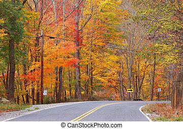 ősz festői, autózás