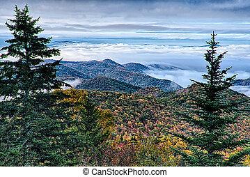 ősz foliage, képben látható, blue hegygerinc parkway, közel, maggie, völgy, north carolina