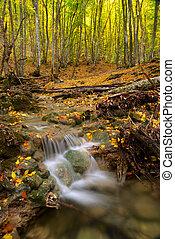 ősz, folyó