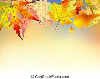 ősz, háttér., zöld, színes