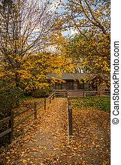 ősz, hegy faház