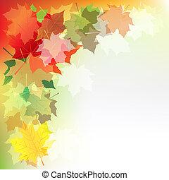 ősz juharfa kilépő