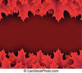 ősz, karmazsin, juharfa, leaves., háttér