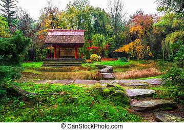 ősz, kert japanese