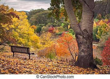 ősz, kilátás