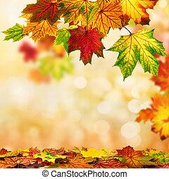 ősz kilépő, bokeh, bordered, háttér