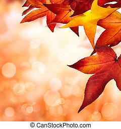 ősz kilépő, bordered, háttér