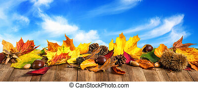 ősz kilépő, erdő, ég, deszkák
