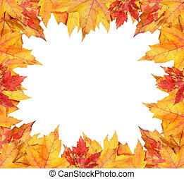 ősz kilépő, fehér, színes, keret