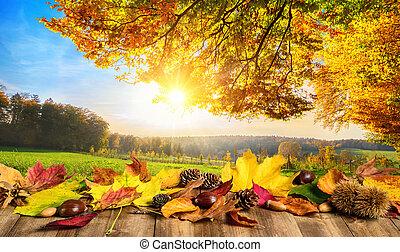 ősz kilépő, fogalom, táj