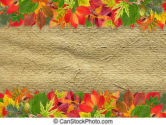 ősz kilépő, grunge, háttér
