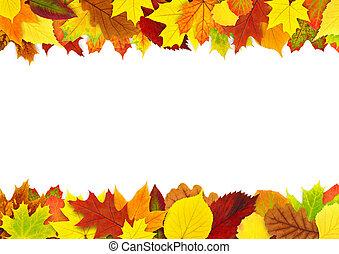 ősz kilépő, határ, színes
