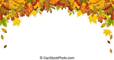 ősz kilépő, keret, színes