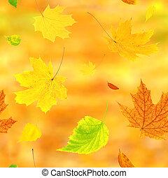 ősz kilépő, repülés, seamless, háttér