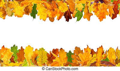 ősz kilépő, tölgy, keret