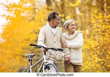 ősz, liget, párosít, bicikli, idősebb ember