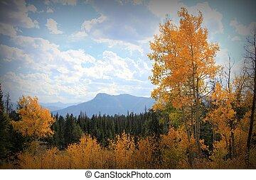 ősz, montana, befest
