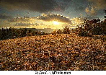 ősz, napnyugta, alatt, erdő
