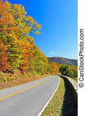 ősz, nemzeti park, shenandoah