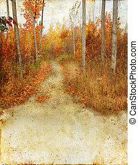 ősz, nyom, erdő, grunge, háttér