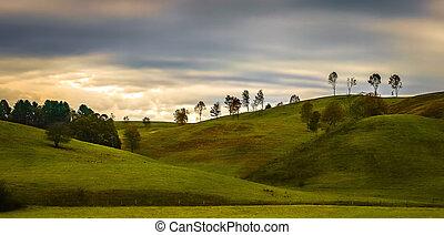 ősz, nyugat virginia, táj, festői